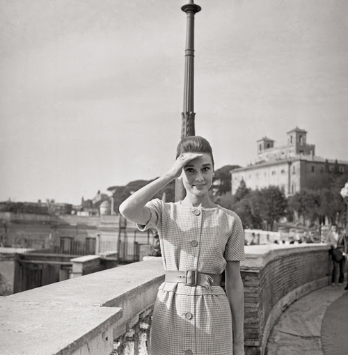 Audrey shirtdress