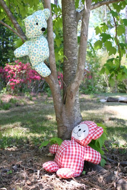 teddy bears climb trees
