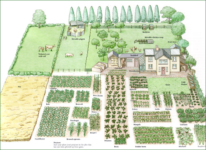 vegetable-garden-planner-design-your-best-ever-our-146244